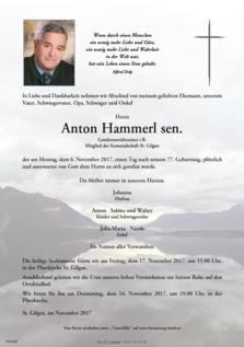 Anton Hammerl sen.