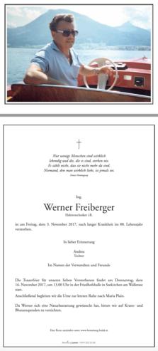 Ing. Werner Freiberger