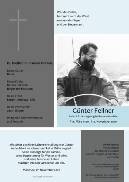 Günter Fellner