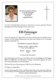 Elfi Feitzinger