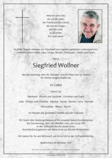 Siegfried Wollner