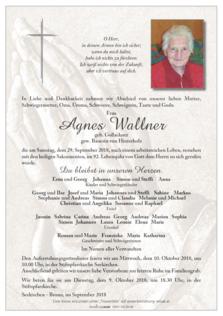 Agnes Wallner